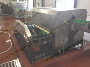 BKAW-5000 Tissue culture old bottle washing drying machine