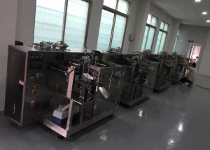 BKGF-MYP Special shaped sachets filling sealing machine 1