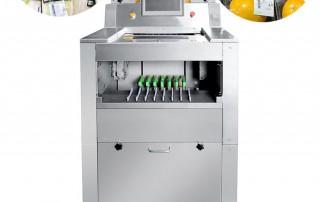 Vegetable fruit packaging machine